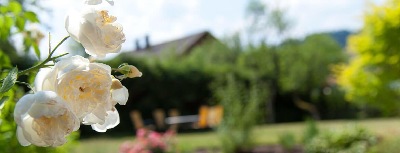 Der schöne Garten vom Hittenpichl
